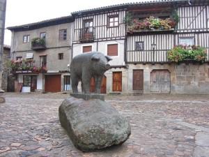 альберка.свинья